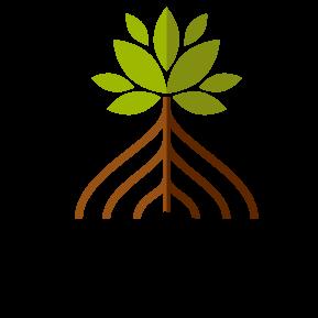 Sequoia Trading Club